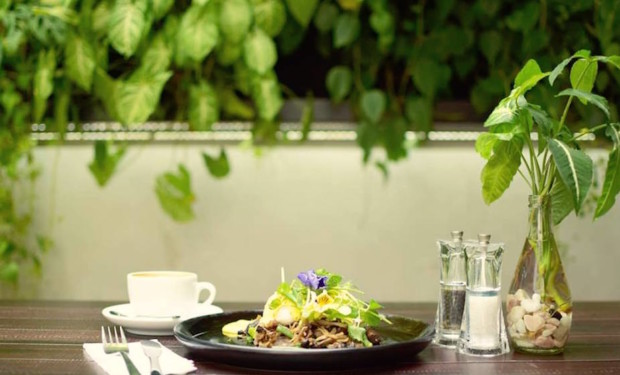 Tropical-themed cafes in Singapore: Botanist