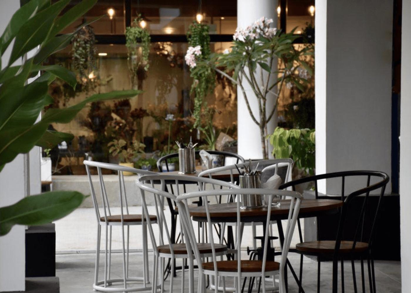 wildseed cafe | garden cafes