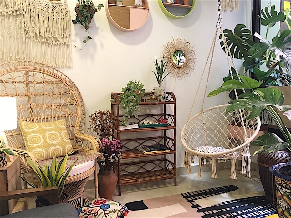Houseplant shopping in Singapore: Tumbleweed