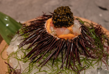 Botan Shrimp Caviar Sea Urchin | Waku Ghin MBS