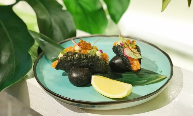 Tasty little king salmon tacos at JYPSY Japanese restaurant