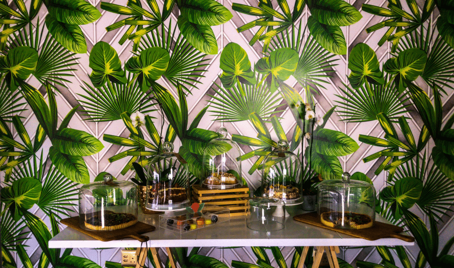 Home decor inspo: 5 ways to turn your home into a green leafy tropical paradise
