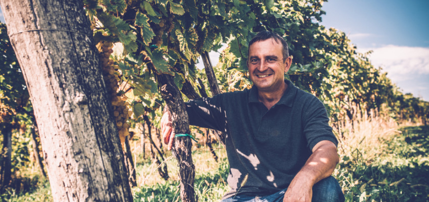 Takoha Wines | Honeycombers Singapore