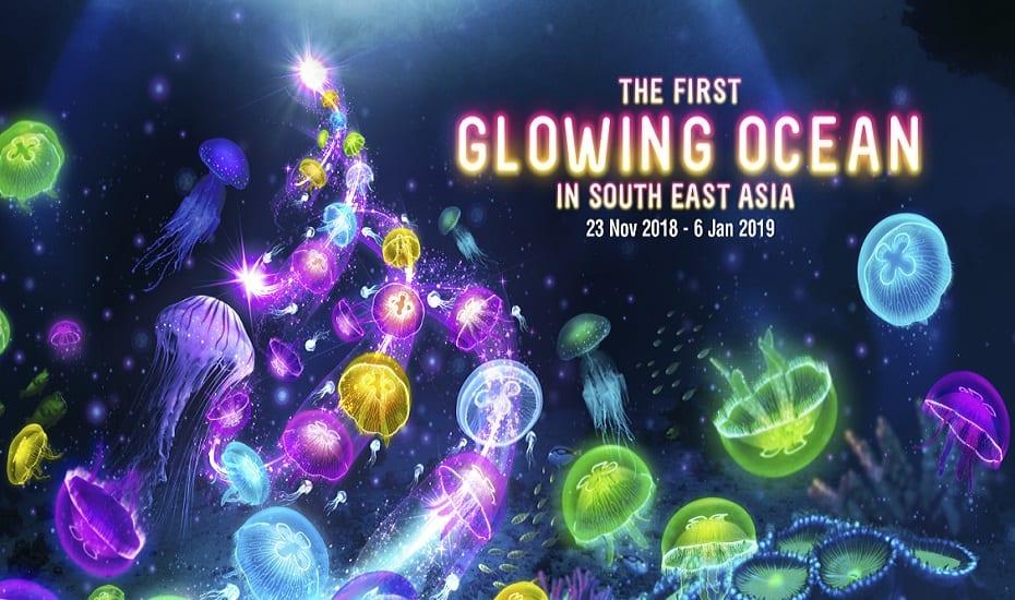 Glowing Ocean at S.E.A. Aquarium