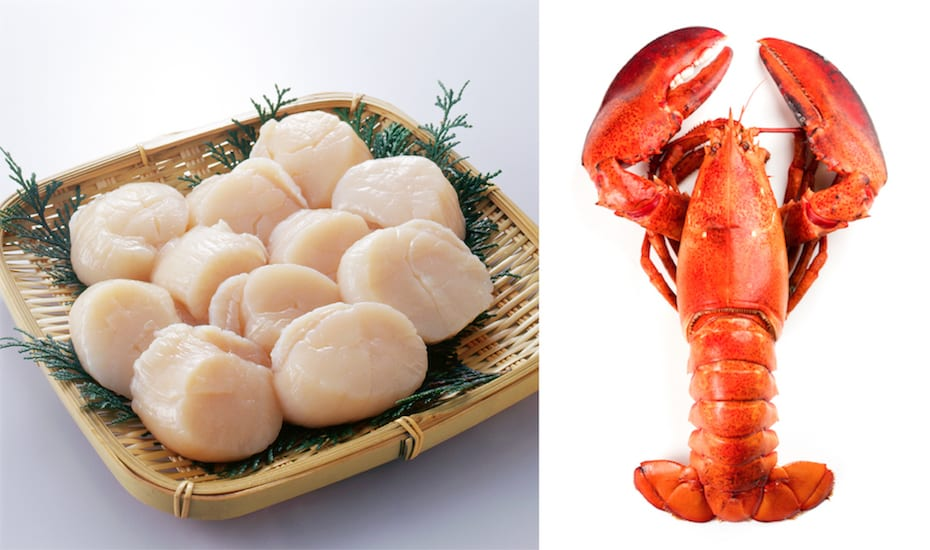 Scallops and two cooked Canadian lobsters from Warehouse Club's frozen seafood range.