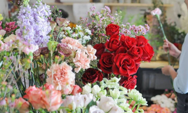 Florists in Singapore | Where to buy flowers | Wonderland Botanicals