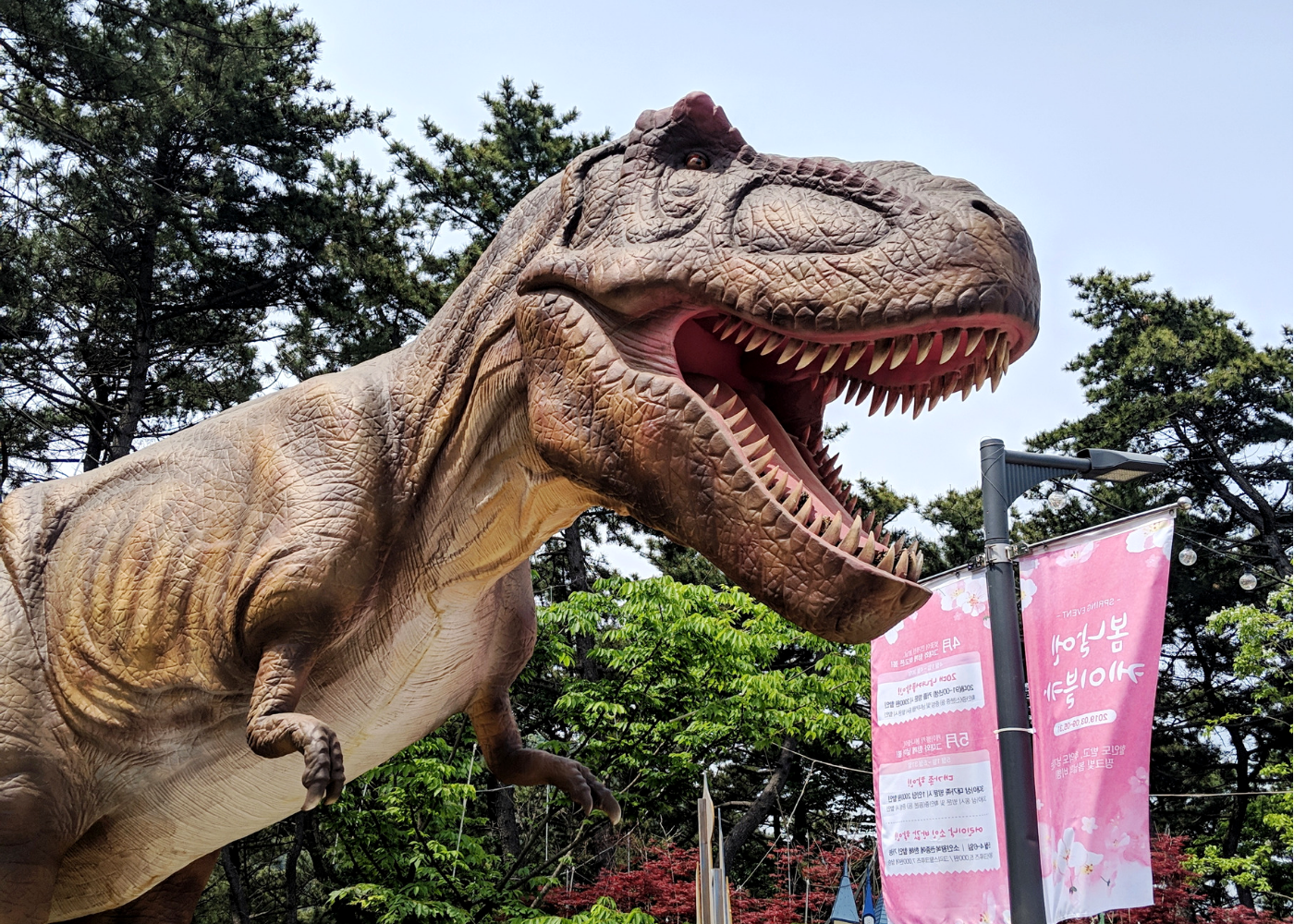 T-rex spotted at Songdo