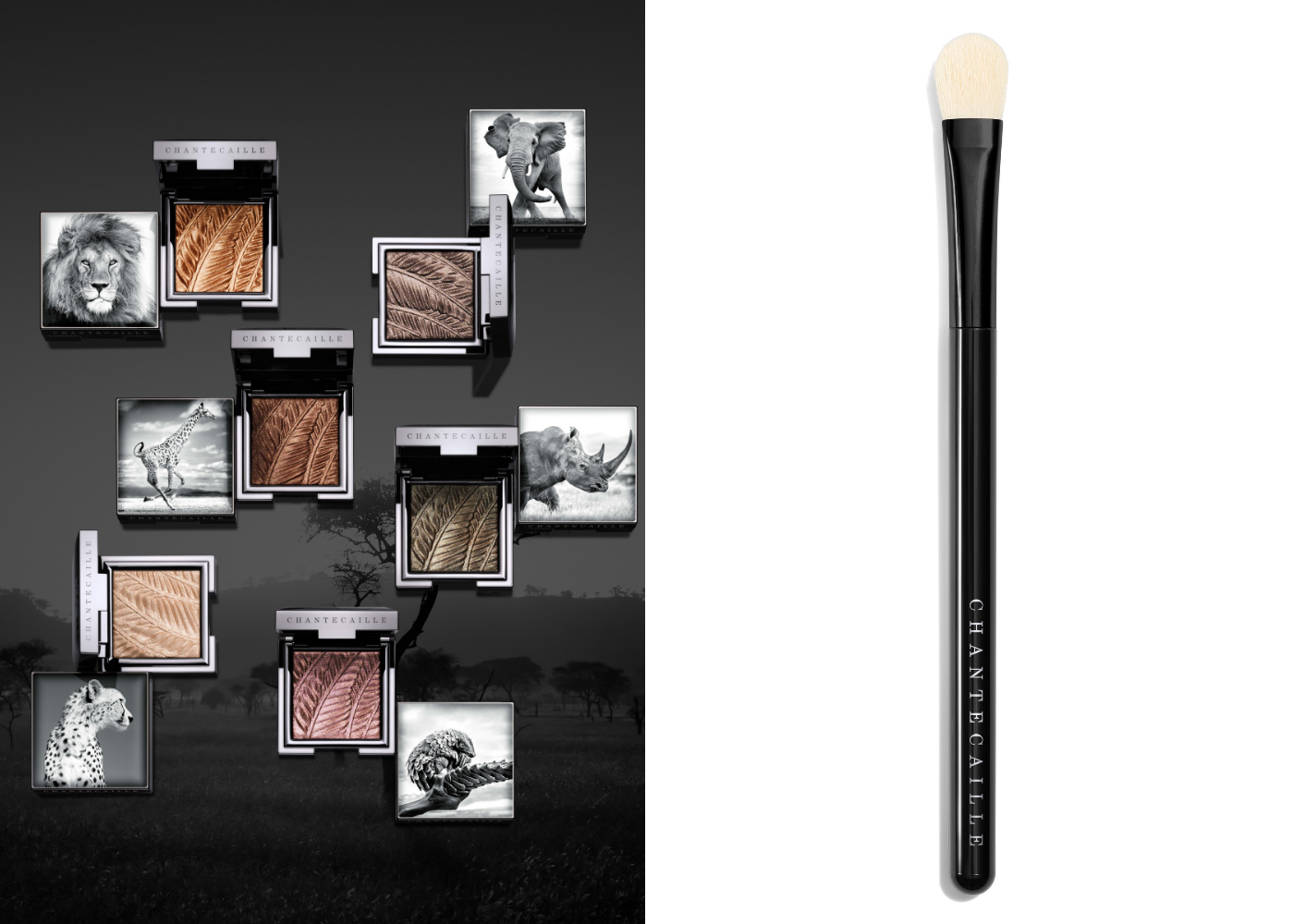 Chantecaille's Fall 2019 collection   Six new eyeshadow shades