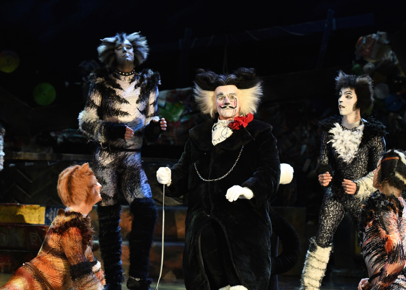 Cats the Musical review A campy theatrical spectacle