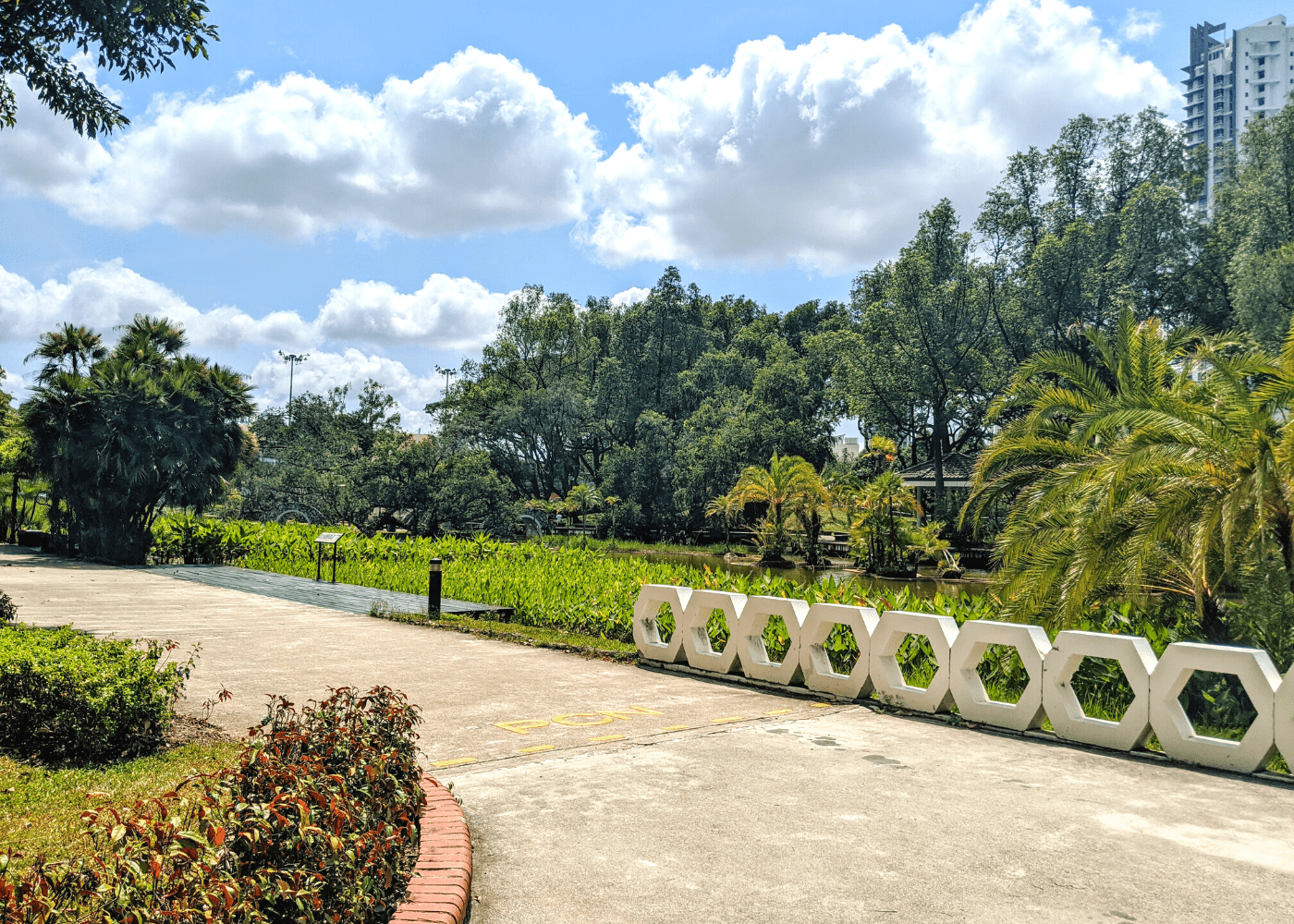 Toa Payoh guide: Toa Payoh Town Park