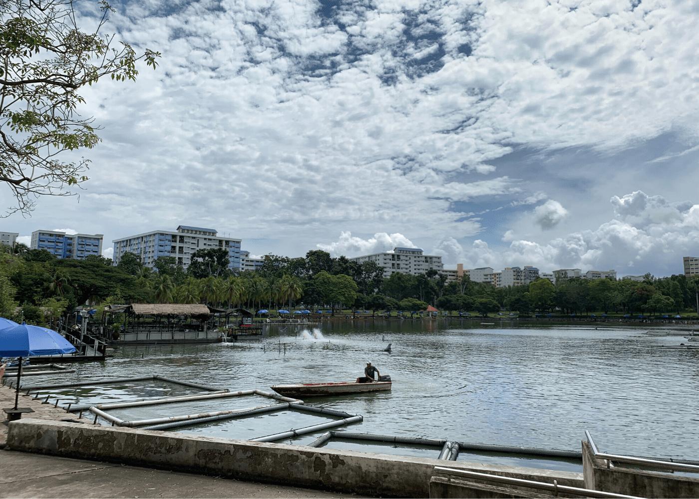 D Best Fishing Pond | Pasir Ris