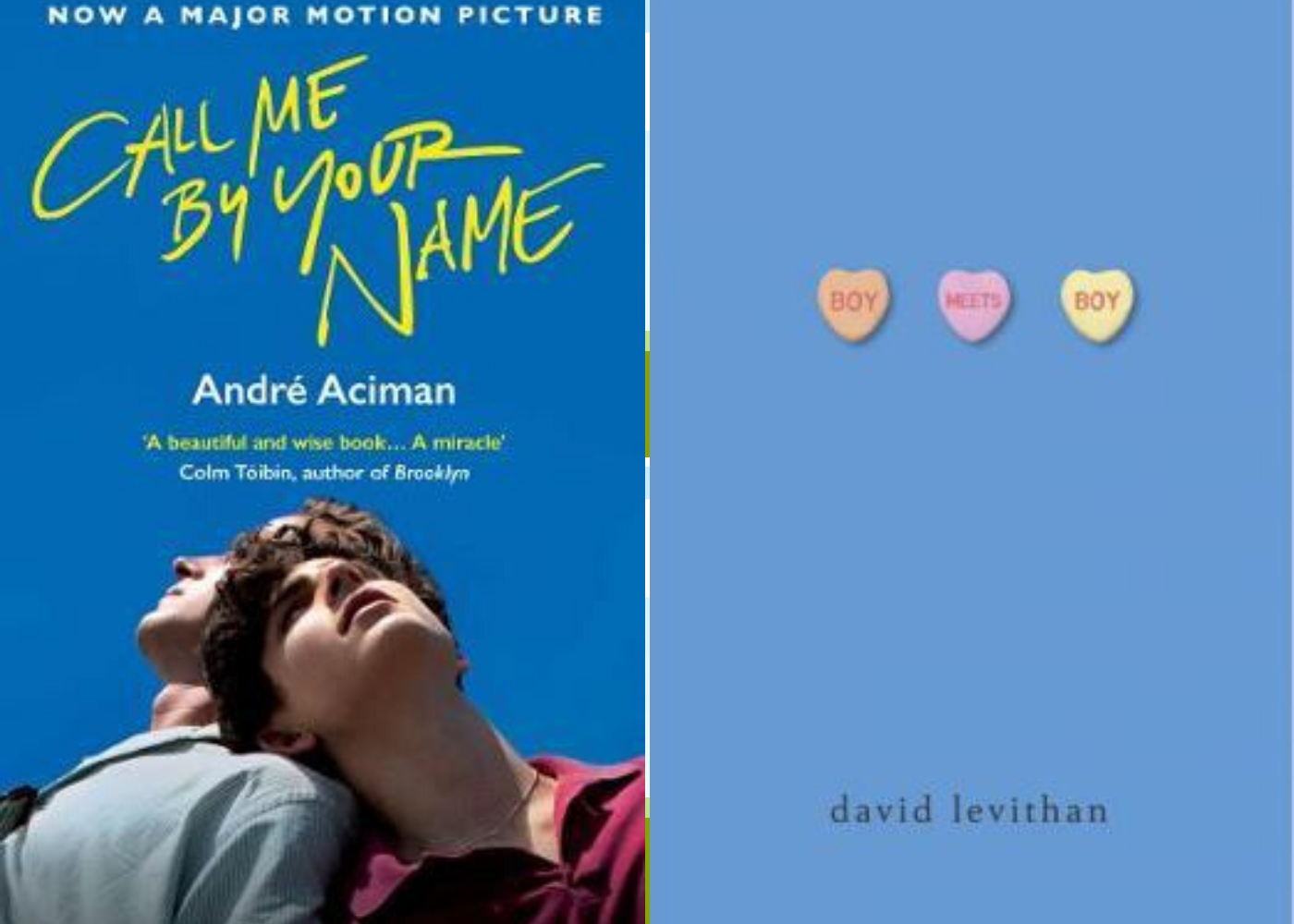 Call Me by Your Name | Boy Meets Boy | Honeycombers Book Club June 2020