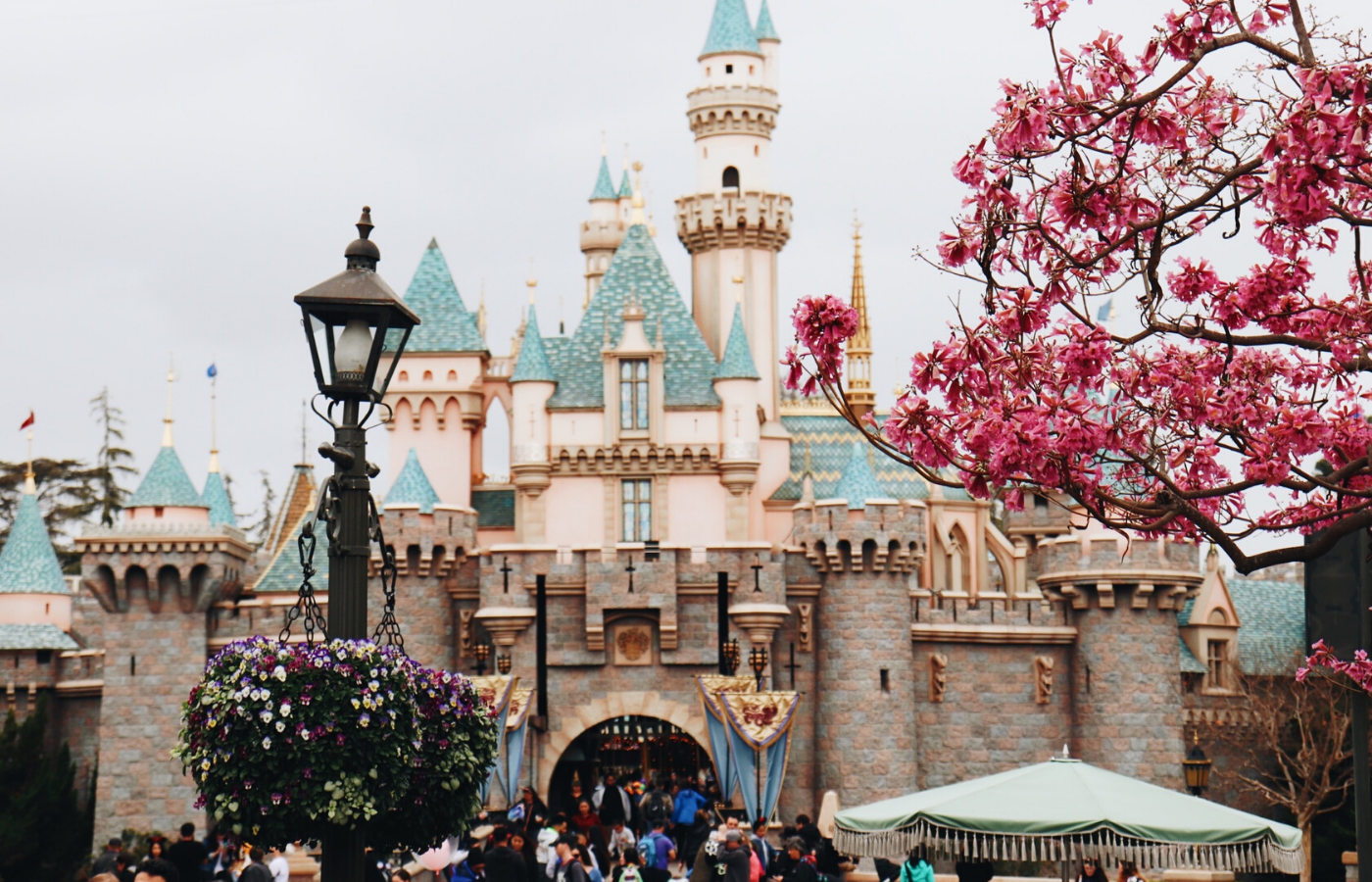disneyland castle | things to do online