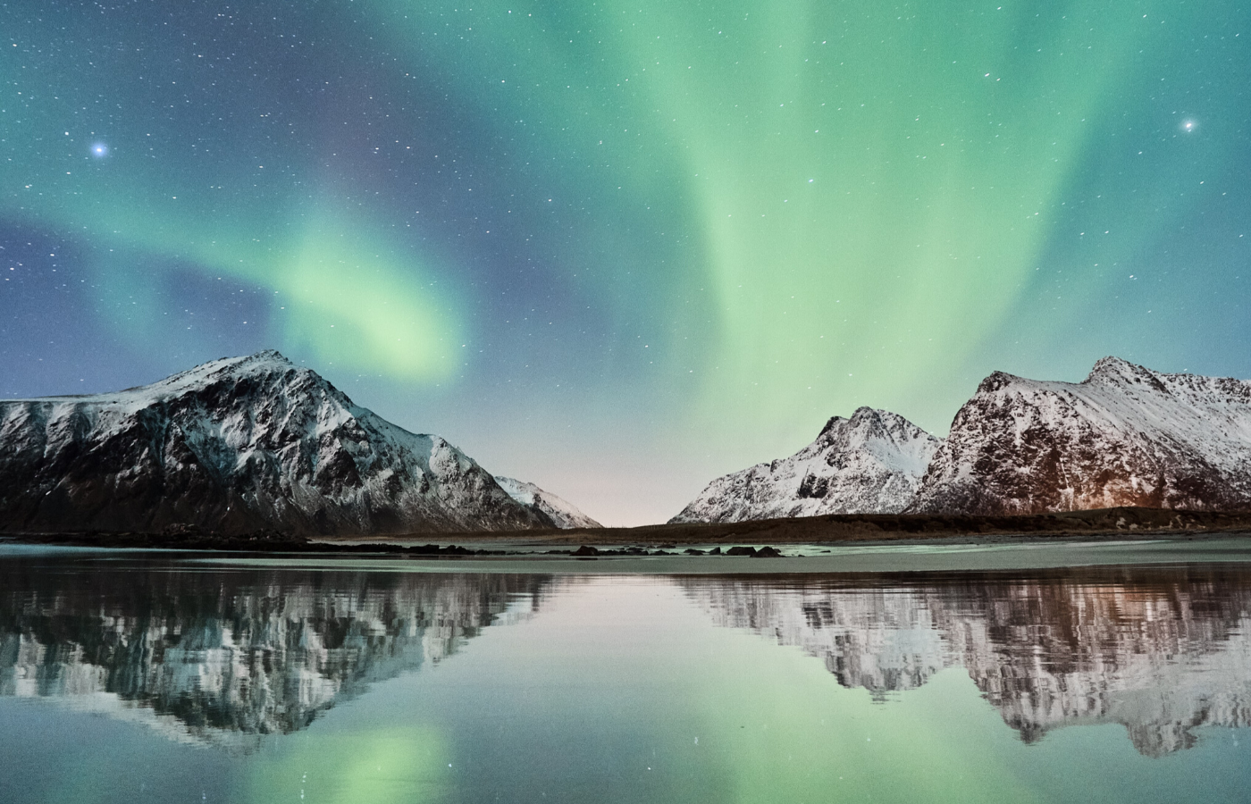 northern lights | things to do online