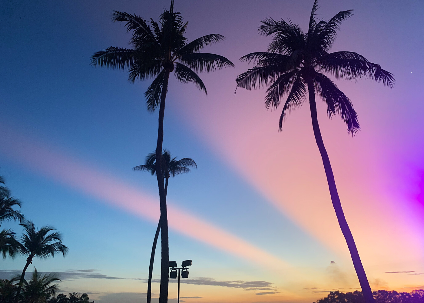 beach sunset | circuit breaker