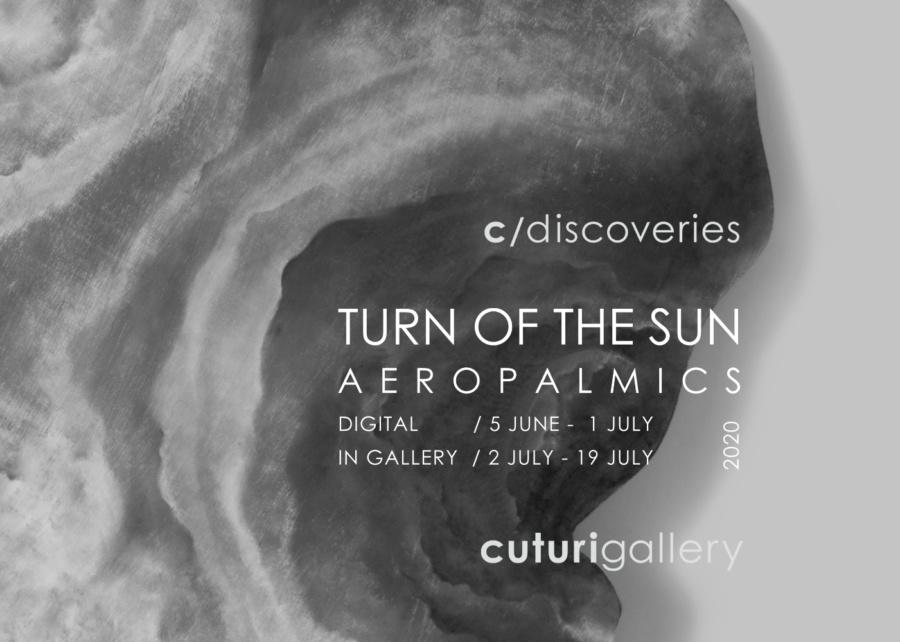 Aeropalmics: Turn of the Sun Solo Exhibition