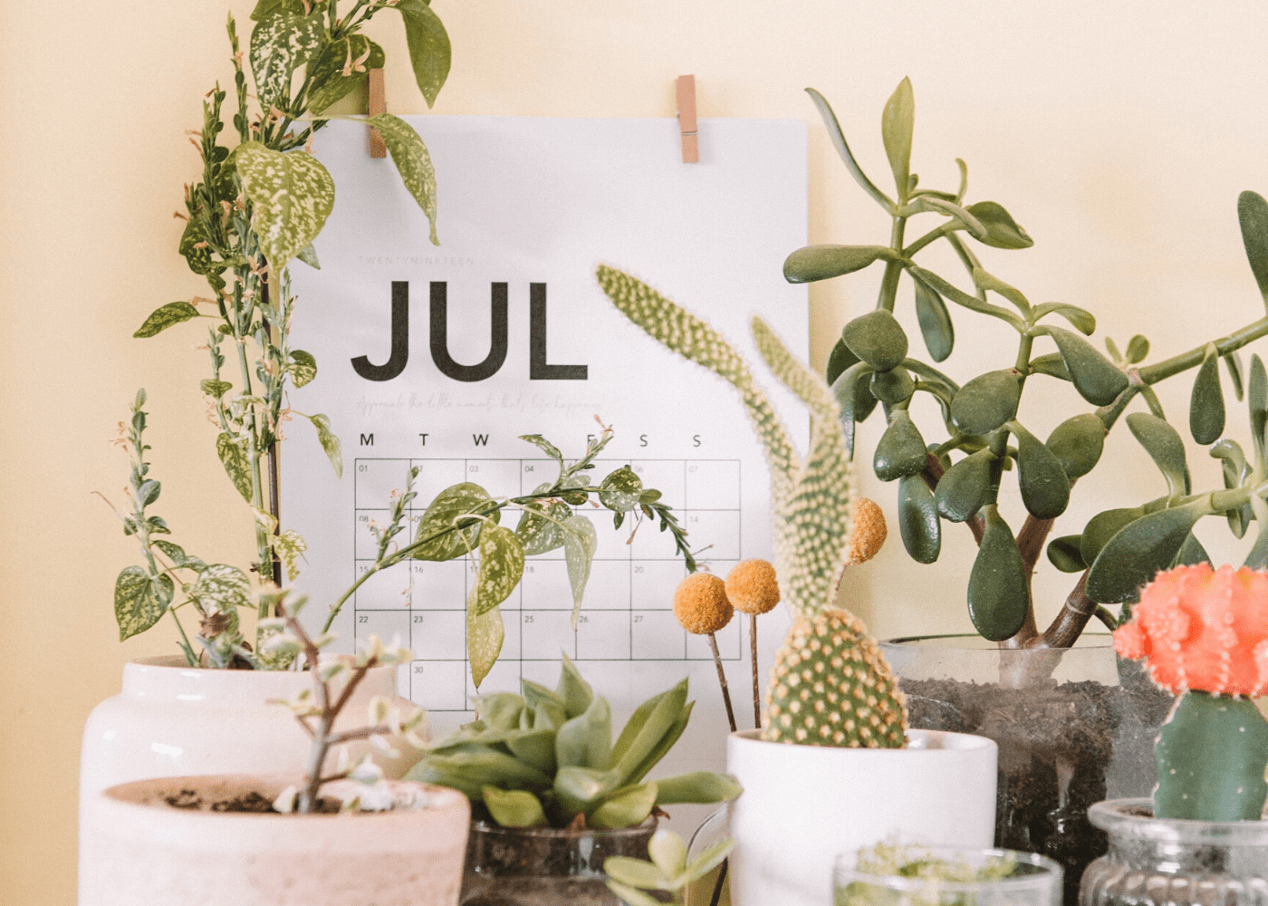 Fantastic things to do this July 2020: Online and offline events