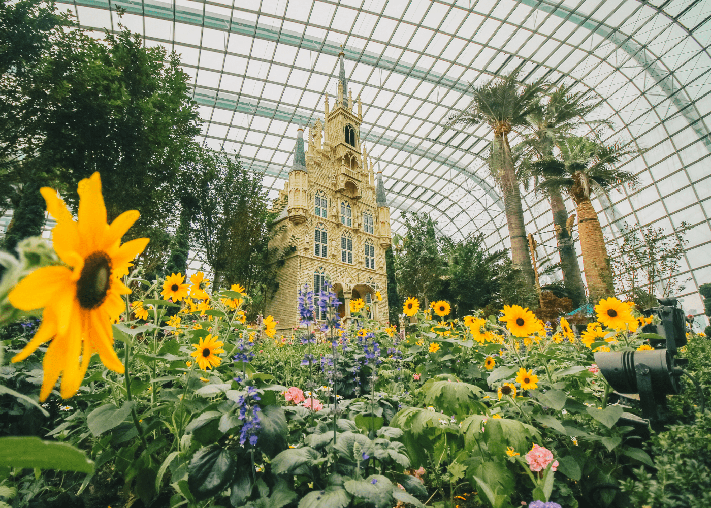 gardens-by-the-bay-flower-dome-phase-2-singapore