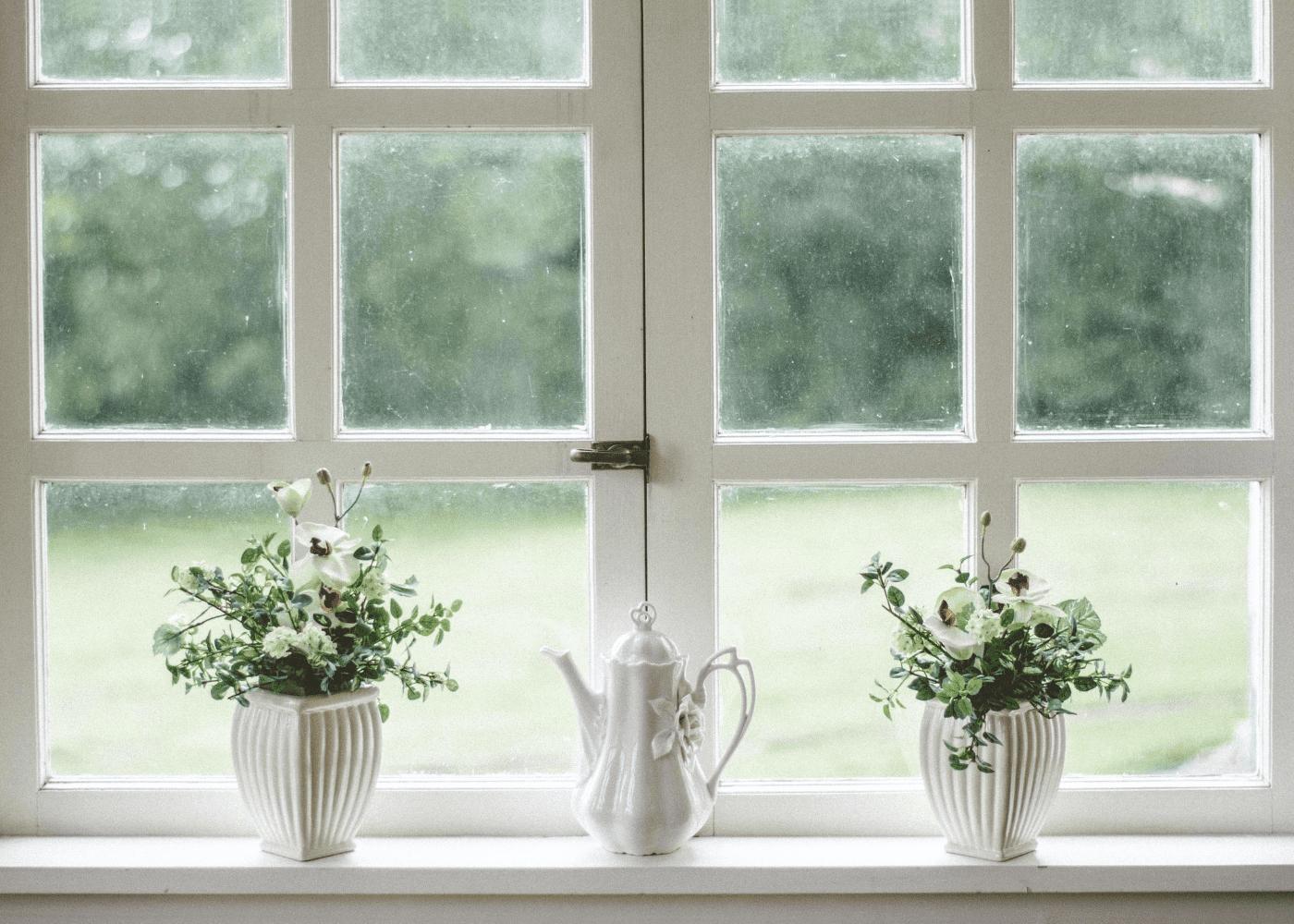 plants | how to prevent dengue