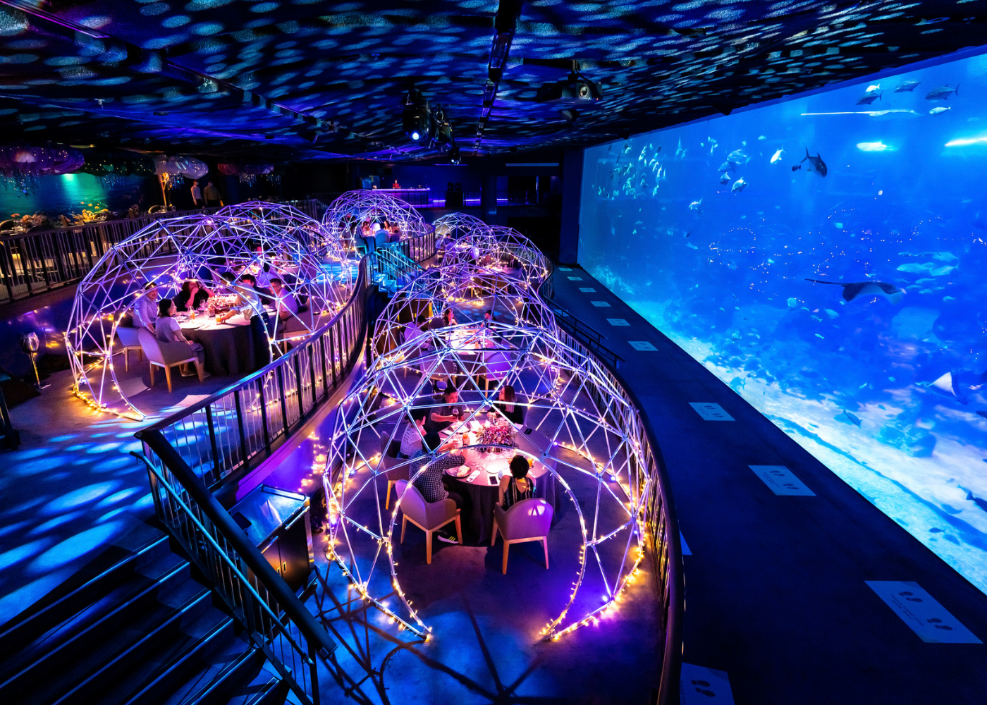 Hot New Tables in September 2020: A cool underwater culinary experience, stellar Swiss cuisine and more