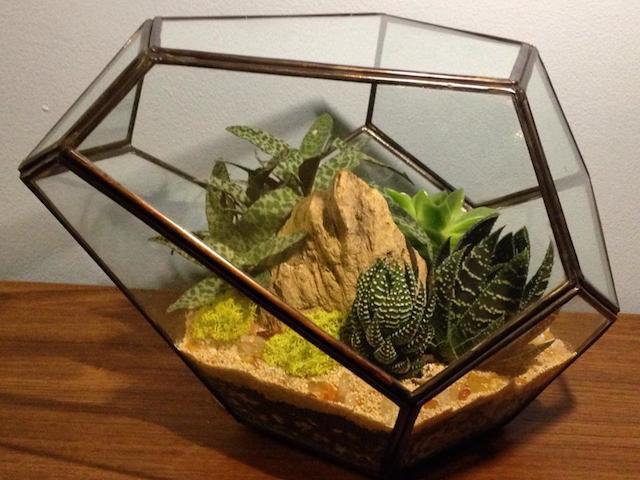 grow little garden jakarta