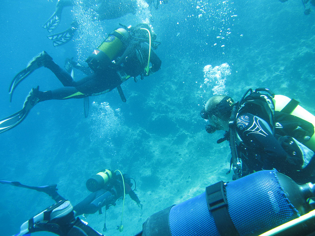 Scuba Diving In Indonesia Where To Get Your Diving License In