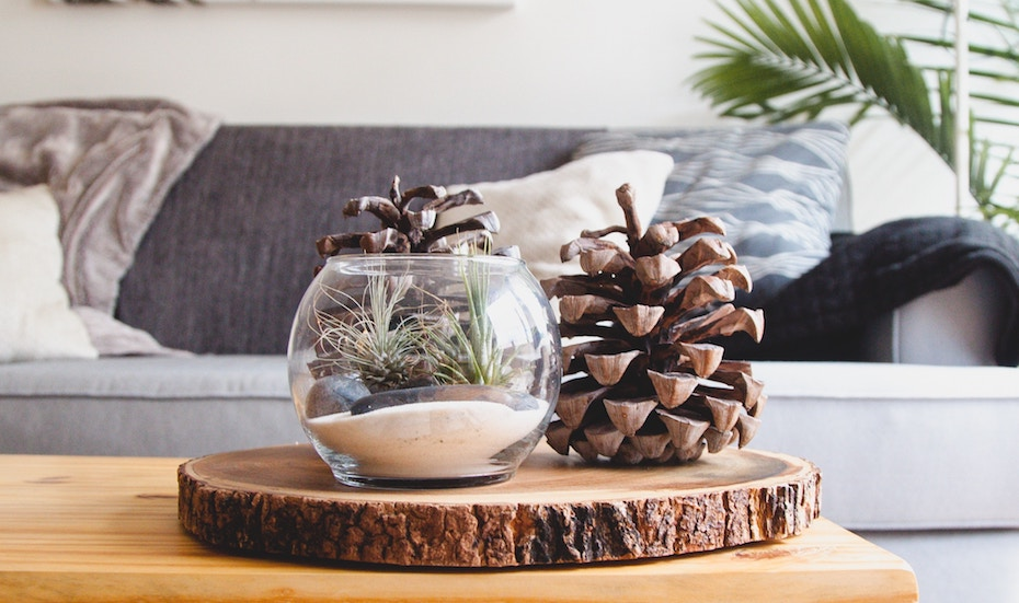 Home Decor Shopping Guide: From Potted Plants To Beautiful Tableware,  Hereu0027s Where To Buy