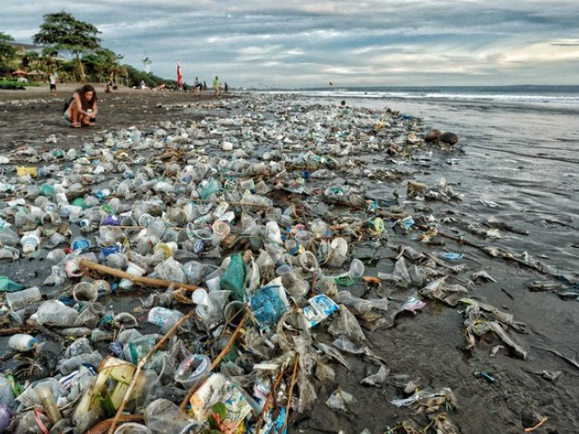 Image result for plastic bali