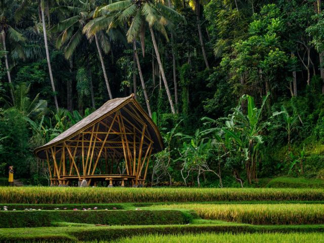 Yoga in Ubud: Four Seasons Sayan