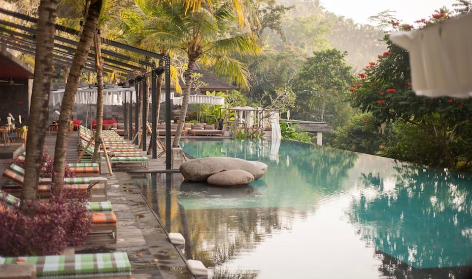 Bali's best infinity pools - Jungle Fish Ubud