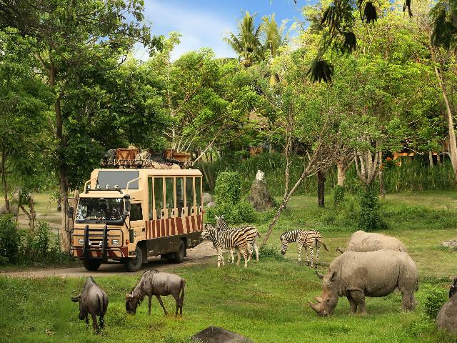 Bali Day Trips: Bali Safari & Marine Park