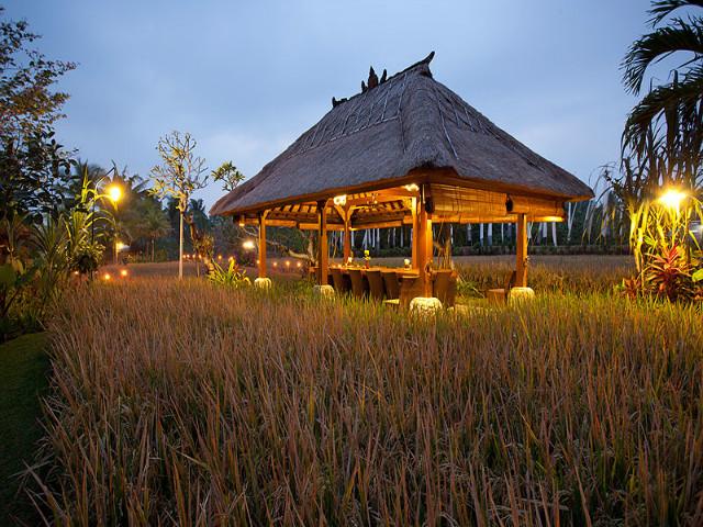 Restaurants in Ubud: Bebek Tepi Sawah