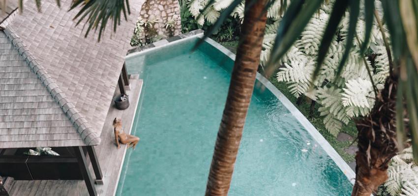 Villa Naga Putih Ubud Bali Luxury Villa Pool