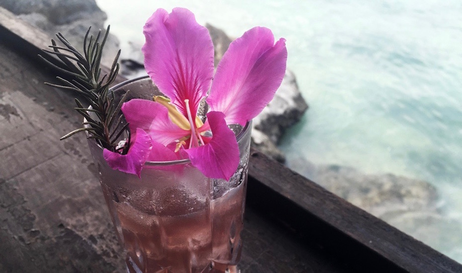 Sip on this! The Countess of Ross at The Howff on Nusa Lembongan is our Cocktail of the Week