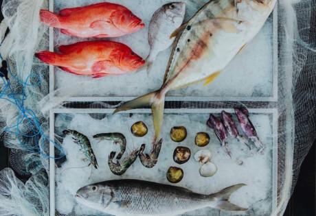Sunday brunch in Bali - seafood brunch at Seasalt Seminyak