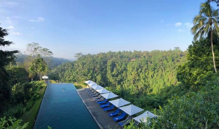 The jungle infinity pool at Alila Ubud hotel in Bali, Indonesia