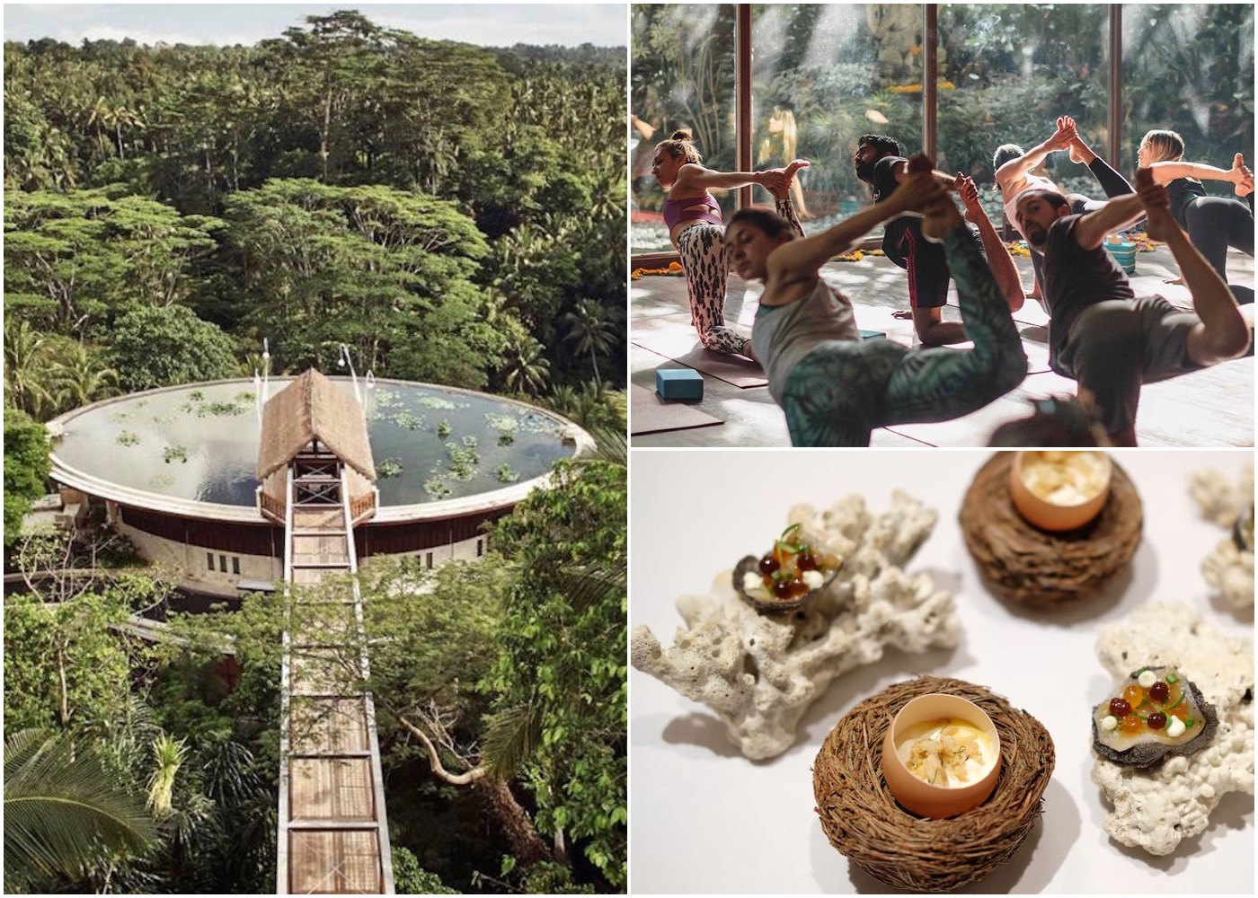 Neighbourhood Guide - where to stay, eat & do yoga in Ubud, Bali, Indonesia