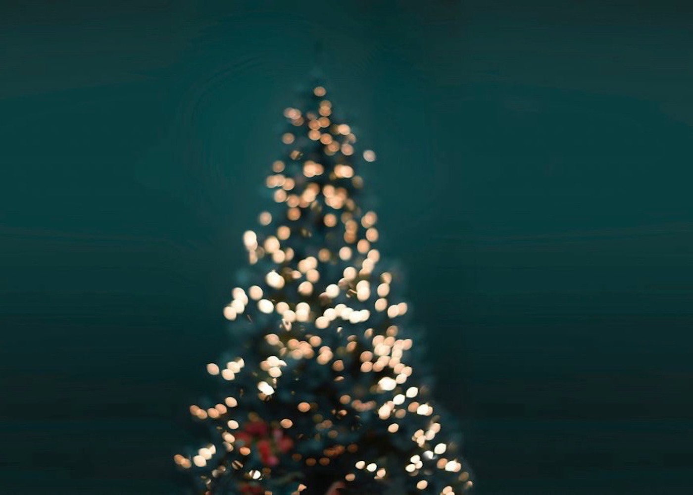 Make it a coastal Christmas Eve at Seasalt