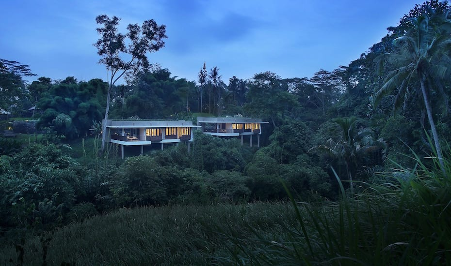 We checked in to Alila Ubud's Terrace Tree Villas for a weekend of jungle adventures…