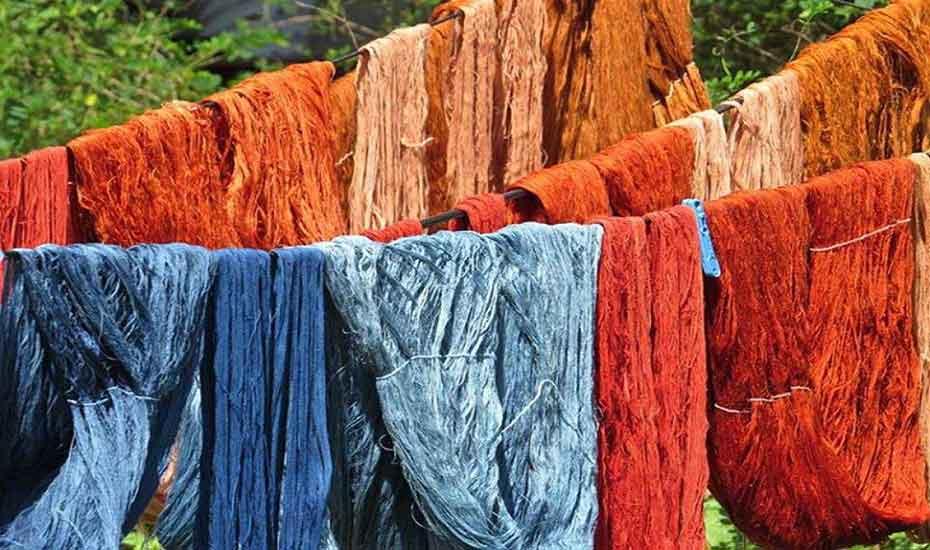 Nature's Colours: Explore natural dye