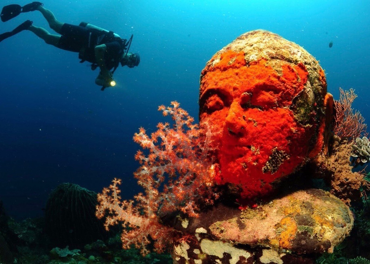 Scuba Diving in Pemuteran, North Bali, Indonesia