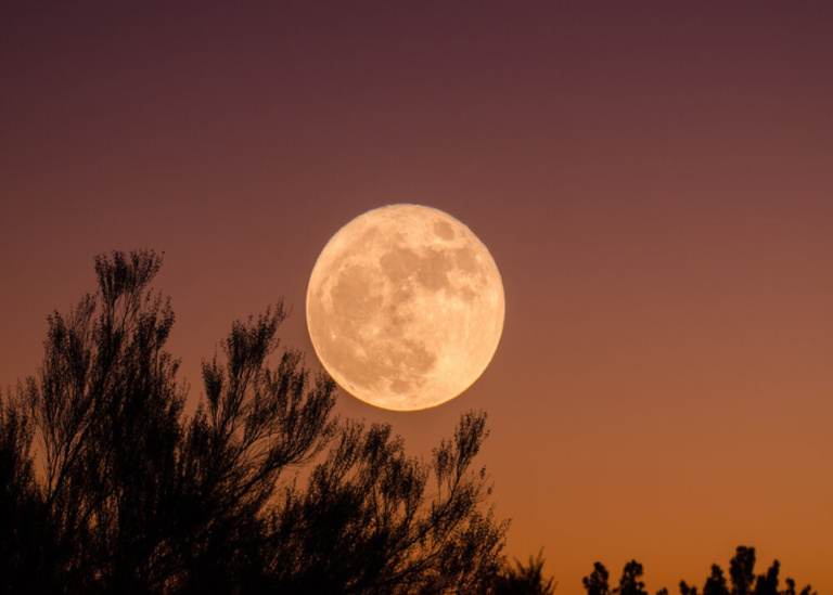 Full Moon Celebration: Twilight Cookout