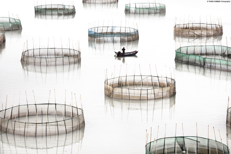Blue Lotus Gallery | art galleries in Hong Kong