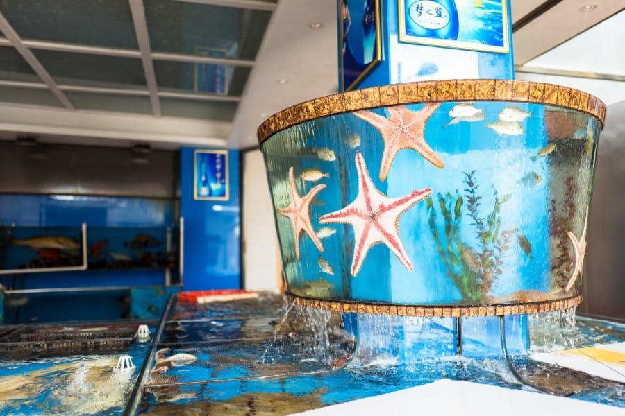 Lei Yue Mun starfish