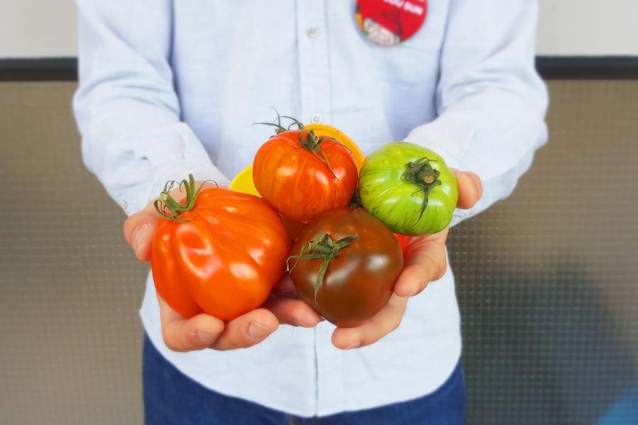 Jou Sun man holding tomatoes