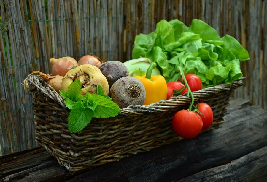 Fresh food delivery services in Hong Kong: Get sustainable and locally grown vegetables now