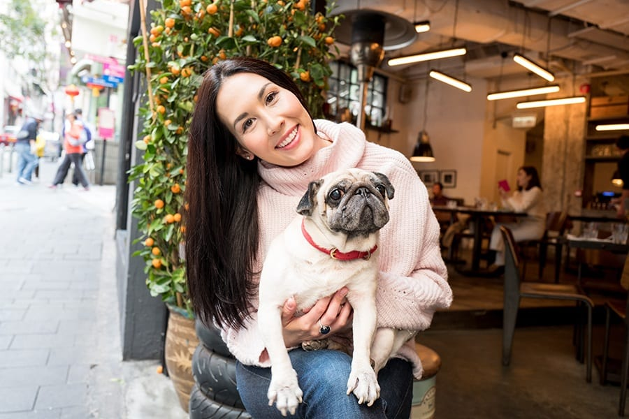 Lucy the Pug Katie Forster