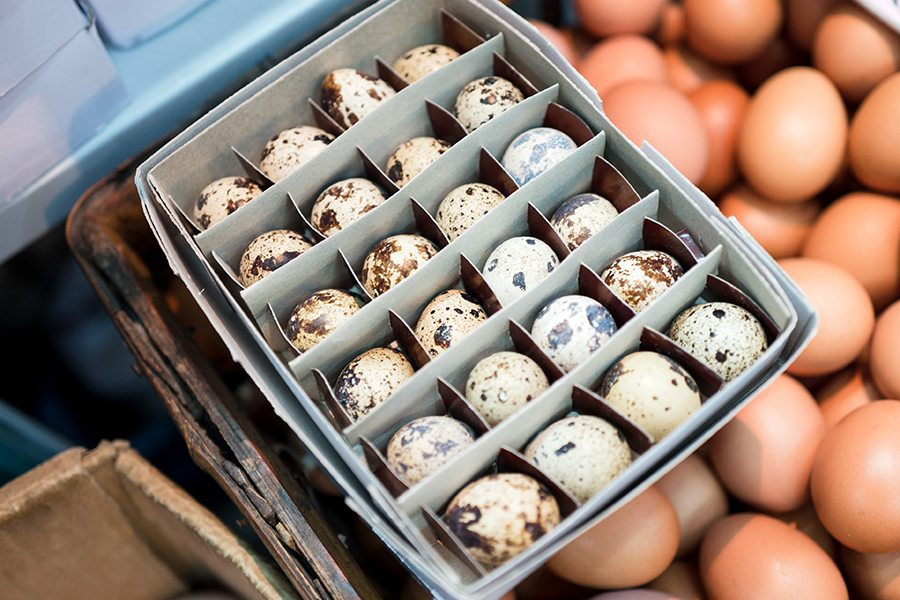 For the love of Hong Kong eggs! We examine the interesting selection of eggs available in the city