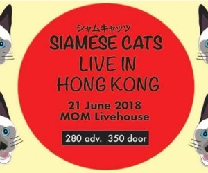 Siamese Cats Live in Hong Kong concerts