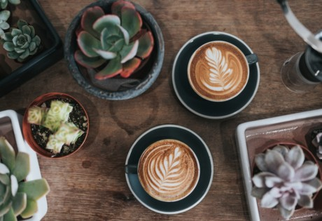 new cafes in Hong Kong coffee and succulents